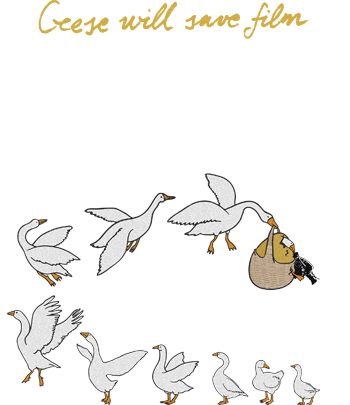 Kustendorf Film and Music Festival